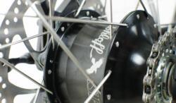 Optibike R series rohloff 14 speed internal hub