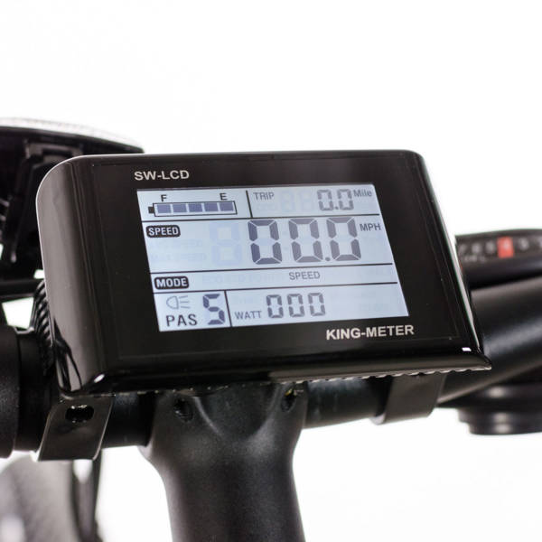 Pioneer Allroad 5 mode LCD display with speedometer