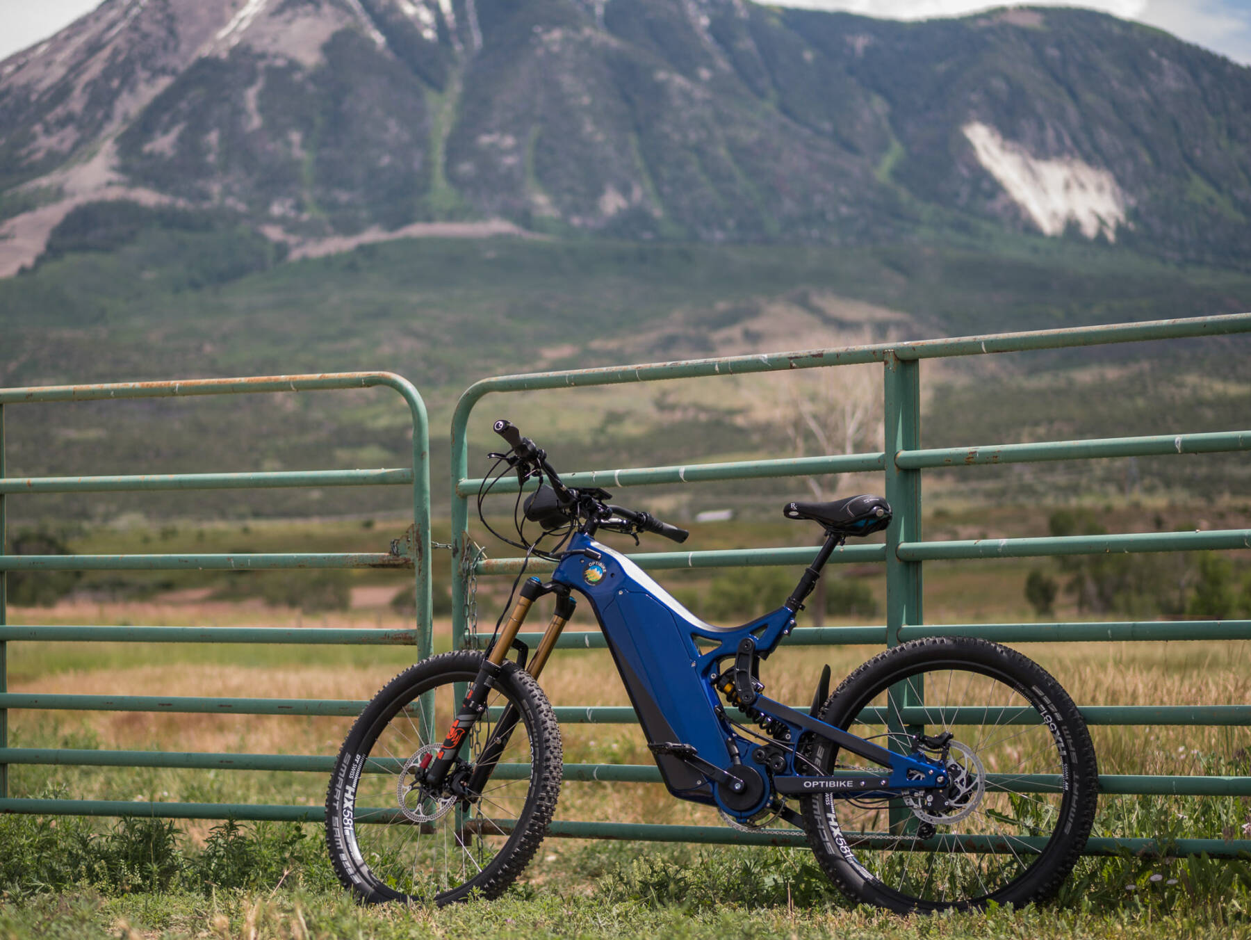 R15C leaning against a fence with mountains in the background