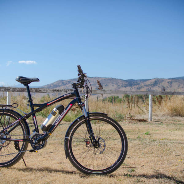 Pioneer Allroad great low cost option